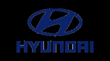 Misiunea noastră Hyundai-piese